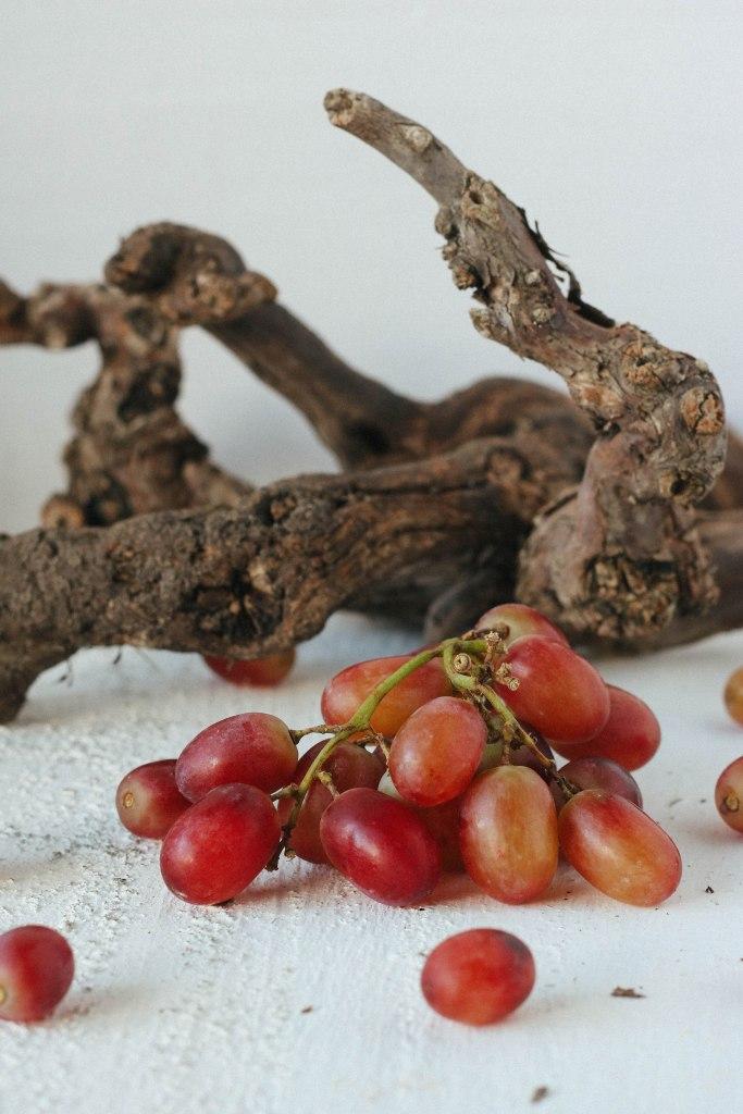 druiven focaccia